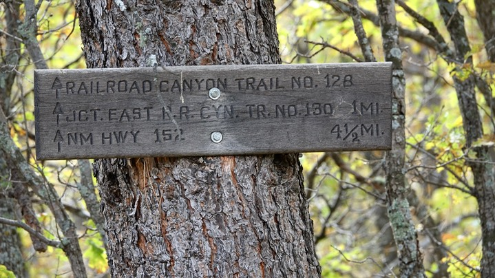 Railroad Canyon Campground to Holden Prong Saddle